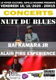 LA NUIT DU BLUES -> COMPLET